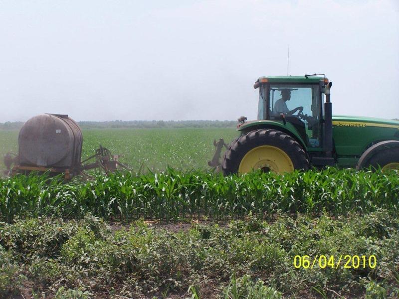 corn-matt-2