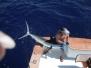 Salvation Sportfishing