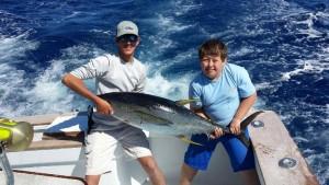 Big YFT Tuna
